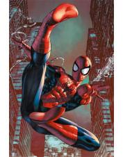 POSTER SPIDER MAN WEB SLING